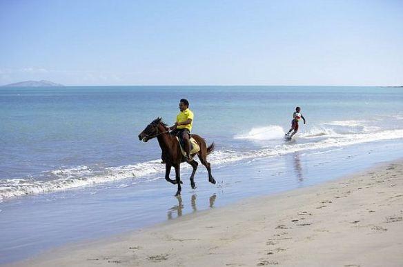 Fiji Horse back riding