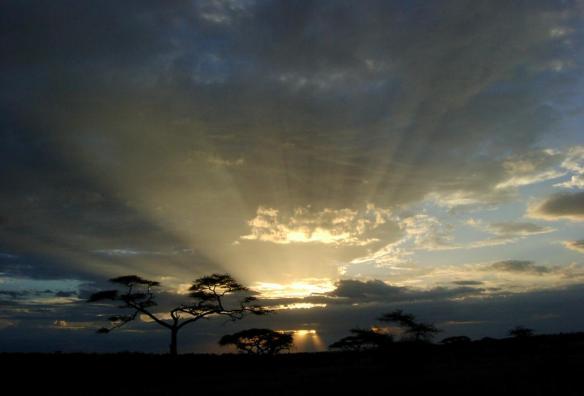 serengeti sunset tanzania