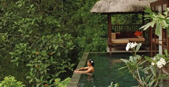 Bali Ubud Hotel & Resort 5