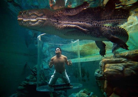 Crocosaurus Cove, Australia