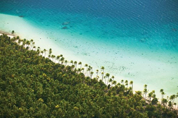 brando island french polynesie (11)