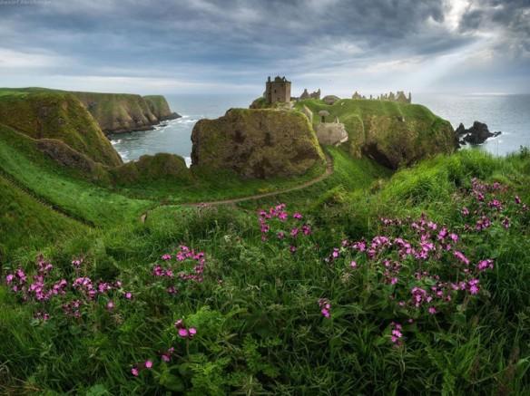 scotland (6)