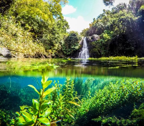 Eau-Bleue-Waterfall-Mauritius-9